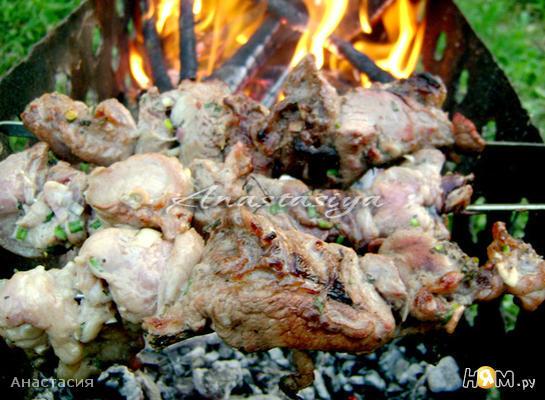 Шашлык из свинины в кефире с зелёным луком