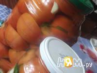 Приготовление соленых помидор за 4 дня: шаг 7