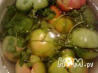 Приготовление помидоров соленых: шаг 8