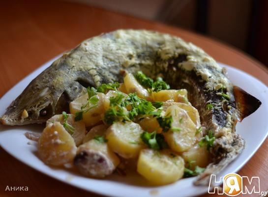 Стерлядь запеченная в духовке с картофелем